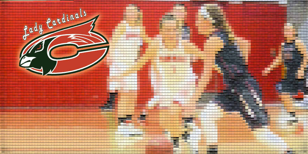 Lady Cards Defeat School of the Ozarks