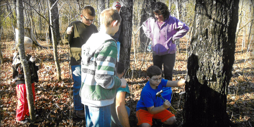 Middle School Maple-Syrup-Making Days